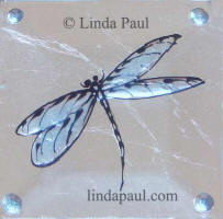 aquamarine light blue dragonfly tile