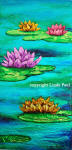 water lilies flower painting